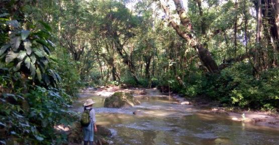 activitie_adventure_treck_river_casas_viejas_minca