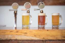 bar_draft_local_beer_casas_viejas_minca