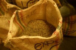la_victoria_coffee_farm_bags_casas_viejas_minca