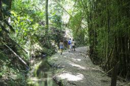 casas_viejas_minca_hiking_web7